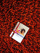 Quick Cart Image for Primo Coral 5' x 12' Shag Rug
